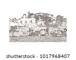 augustine ruins in old goa  goa ... | Shutterstock .eps vector #1017968407