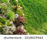 Rock Garden On The Lawn...