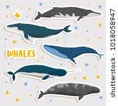 set of cute cartoon whales.... | Shutterstock .eps vector #1018058947