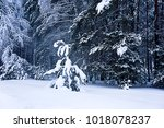 winter forest in the snow | Shutterstock . vector #1018078237