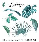 vector tropical leaves set ... | Shutterstock .eps vector #1018130563