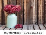 large bouquet of mums in a... | Shutterstock . vector #1018161613