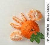 image of orange studio isolated ...   Shutterstock . vector #1018243003
