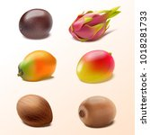 set of isolated tropical fruits ... | Shutterstock .eps vector #1018281733