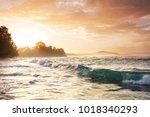 beautiful tropical pacific... | Shutterstock . vector #1018340293