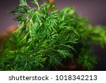 green dill.vegetarian food with ... | Shutterstock . vector #1018342213