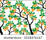 orange tree with leaves and... | Shutterstock .eps vector #1018376167