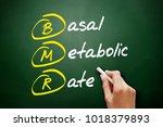 bmr   basal metabolic rate... | Shutterstock . vector #1018379893
