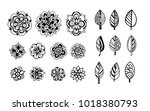 fowers and leaves. set... | Shutterstock .eps vector #1018380793