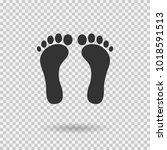 human footprint icon. vector...   Shutterstock .eps vector #1018591513