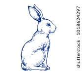 bunny cute rabbit animal ink... | Shutterstock .eps vector #1018624297