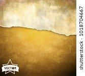 old wall texture. vector. | Shutterstock .eps vector #1018704667