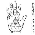 Palmistry Hand. Vintage Hand...