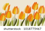 yellow tulip spring floral... | Shutterstock .eps vector #1018775467