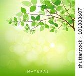 fresh green leaves on natural... | Shutterstock .eps vector #101883607