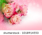 flower pink roses fo valentines ... | Shutterstock . vector #1018914553