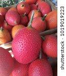 Small photo of Fresh gac fruit