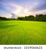 beautiful green grass field... | Shutterstock . vector #1019060623