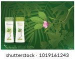 ads for shower creams... | Shutterstock .eps vector #1019161243