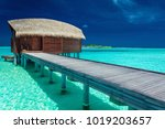 over water bungalows with steps ... | Shutterstock . vector #1019203657