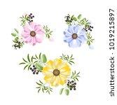 flower set isolated on white... | Shutterstock .eps vector #1019215897