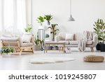 pouf and white fur in spacious... | Shutterstock . vector #1019245807