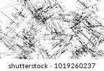 grainy black and white distress ... | Shutterstock .eps vector #1019260237