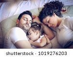 sleeping in daddies arms are... | Shutterstock . vector #1019276203