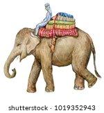 elephant. watercolor... | Shutterstock . vector #1019352943