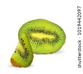 fresh  nutritious and tasty... | Shutterstock .eps vector #1019442097