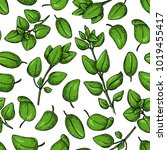 oregano vector seamless pattern.... | Shutterstock .eps vector #1019455417