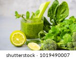 smoothies of green vegetables...   Shutterstock . vector #1019490007