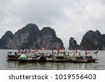 row of boats with vietnamese... | Shutterstock . vector #1019556403
