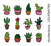 colored cactus in pots vector... | Shutterstock .eps vector #1019569783
