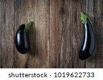 pair of shiny eggplants on... | Shutterstock . vector #1019622733