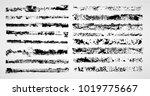 grunge paint stripe . vector... | Shutterstock .eps vector #1019775667