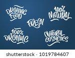 lettering set for natural... | Shutterstock .eps vector #1019784607