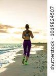 refreshing wild sea side... | Shutterstock . vector #1019824507