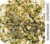 marijuana bud cannabis flower... | Shutterstock . vector #1019833093