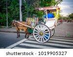manila  philippines   feb 4 ... | Shutterstock . vector #1019905327
