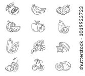 simple fruits icon | Shutterstock .eps vector #1019923723