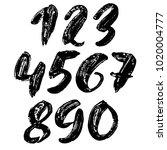 set of calligraphic ink numbers.... | Shutterstock .eps vector #1020004777