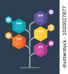 vertical timeline info graphics.... | Shutterstock .eps vector #1020027877