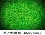 green grass texture background... | Shutterstock . vector #1020046093