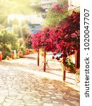 traditional terrace with... | Shutterstock . vector #1020047707