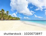 secluded beach on saona island  ... | Shutterstock . vector #1020073897