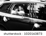 luxury elegant wedding couple... | Shutterstock . vector #1020163873