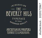 typeface. original handmade... | Shutterstock .eps vector #1020172867