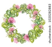hand drawn watercolor wreath of ... | Shutterstock . vector #1020282883