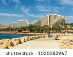 eilat  israel   november 7 ... | Shutterstock . vector #1020282967
